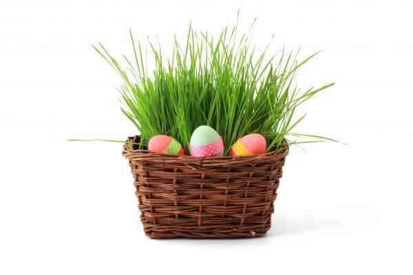 Sveikinimas Šv. Velykų proga!